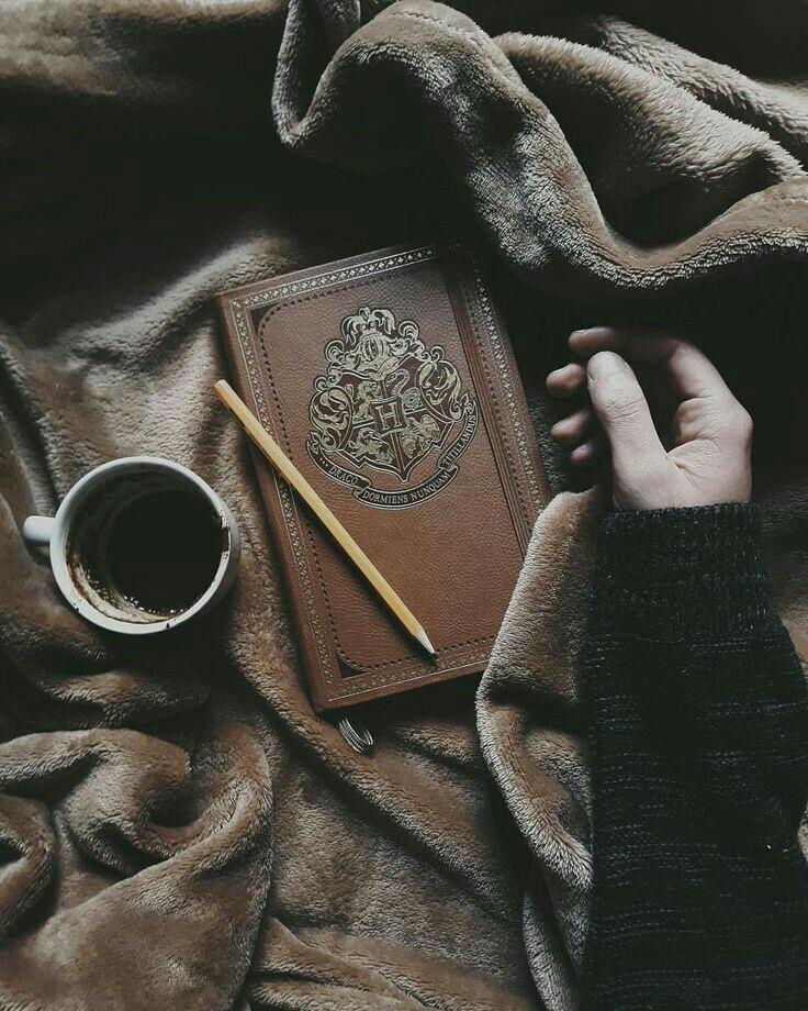 Slytherin Queen  (Draco Malfoy x reader) - Good Morning - Wattpad