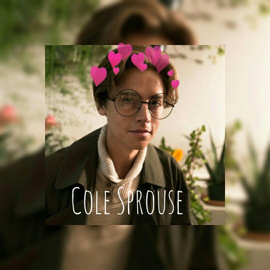 Imagine book - Cole Sprouse imagine - Wattpad