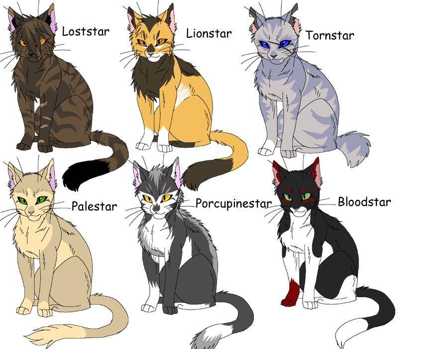 Warrior Cat Website Names