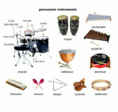 kinds of musical instrument percussion instrument wattpad