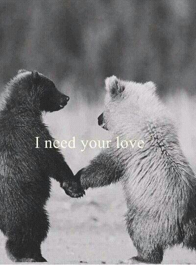 #englisch #leben #liebe #life #love #poesie #sad #sprüche #traurig