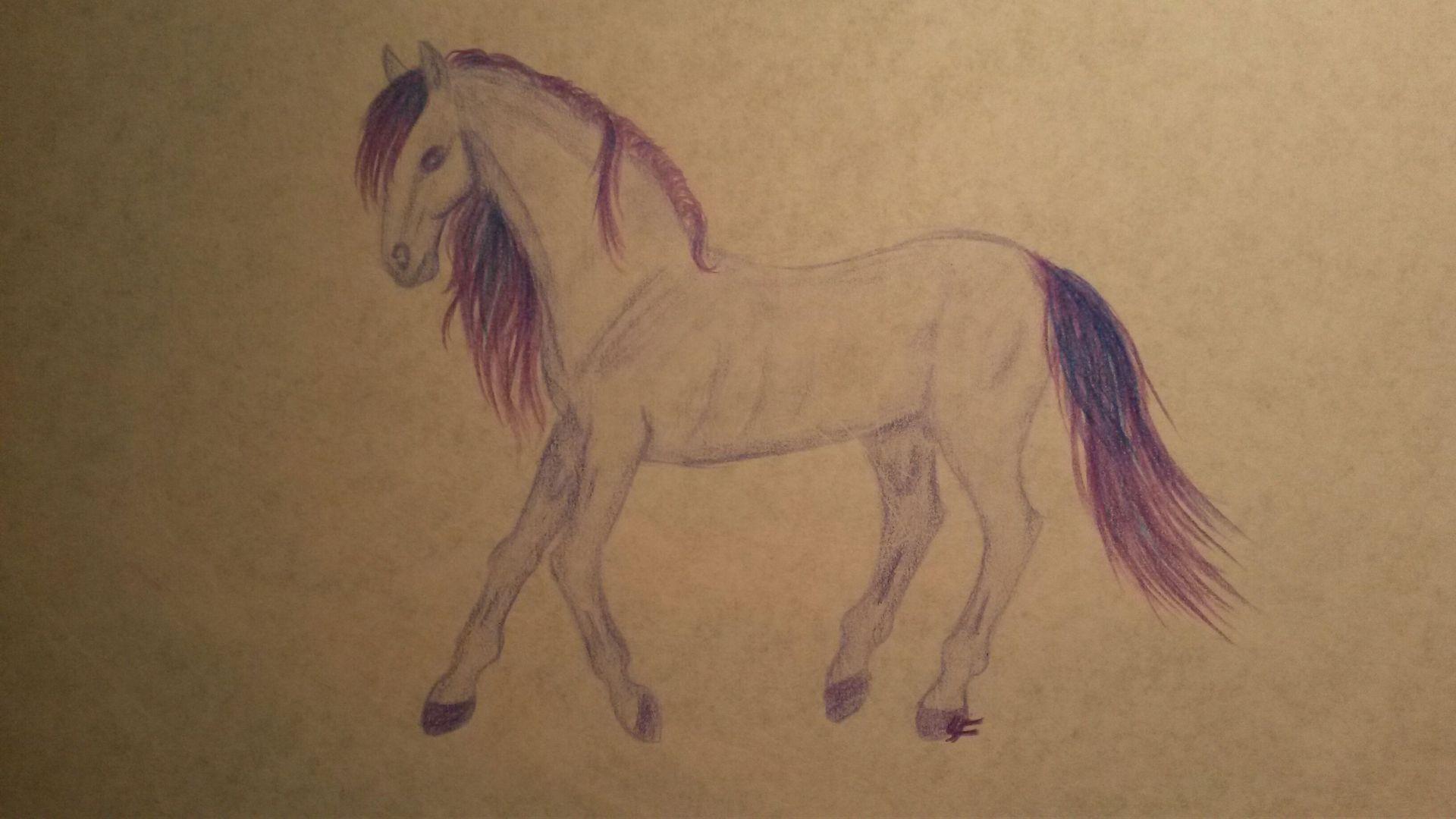 steigendes pferd zeichnen  ausmalbilder und vorlagen