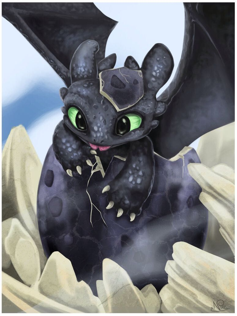 Toothless X Baby Night Fury Reader  Chapter 1  Wattpad