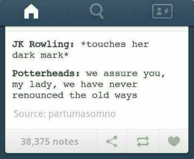 überlebenswichtiges Als Potterhead Harry Potter Harry