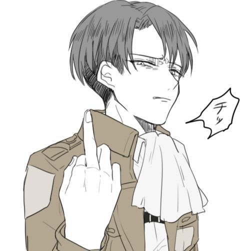 Attack on titan one shots levi x reader i still love her