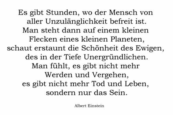 Sprüche Zitate Von Albert Einstein Wattpad
