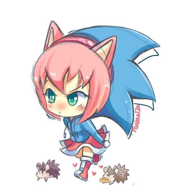 Funny And Kawaii Sonic Picture Book 1 Human Amy In