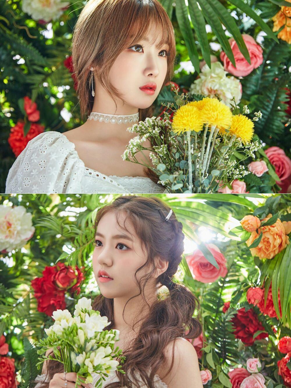 lirik lagu song lyrics seoryoung lena gwsn star touch heart wattpad