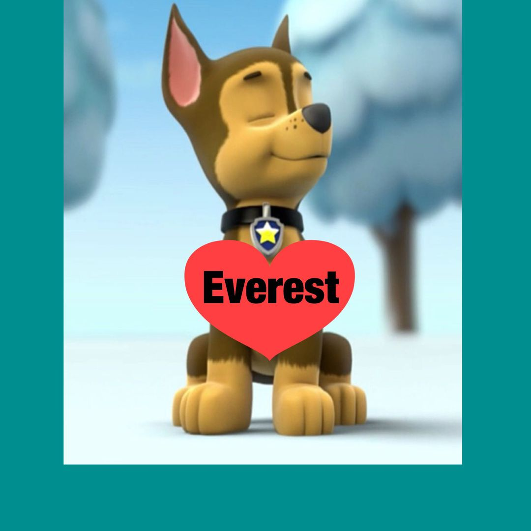 Chase and Everest love life - A conffesion to make and a