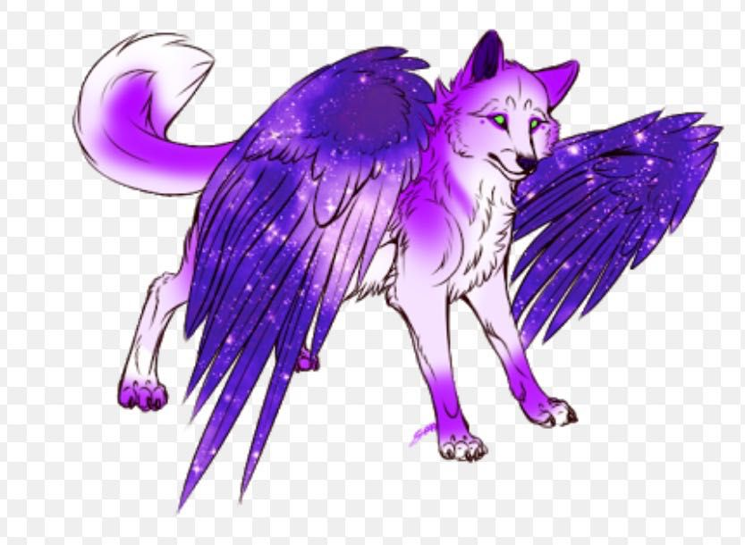 Adoptable S Closed Purple Winged Wolf Wattpad