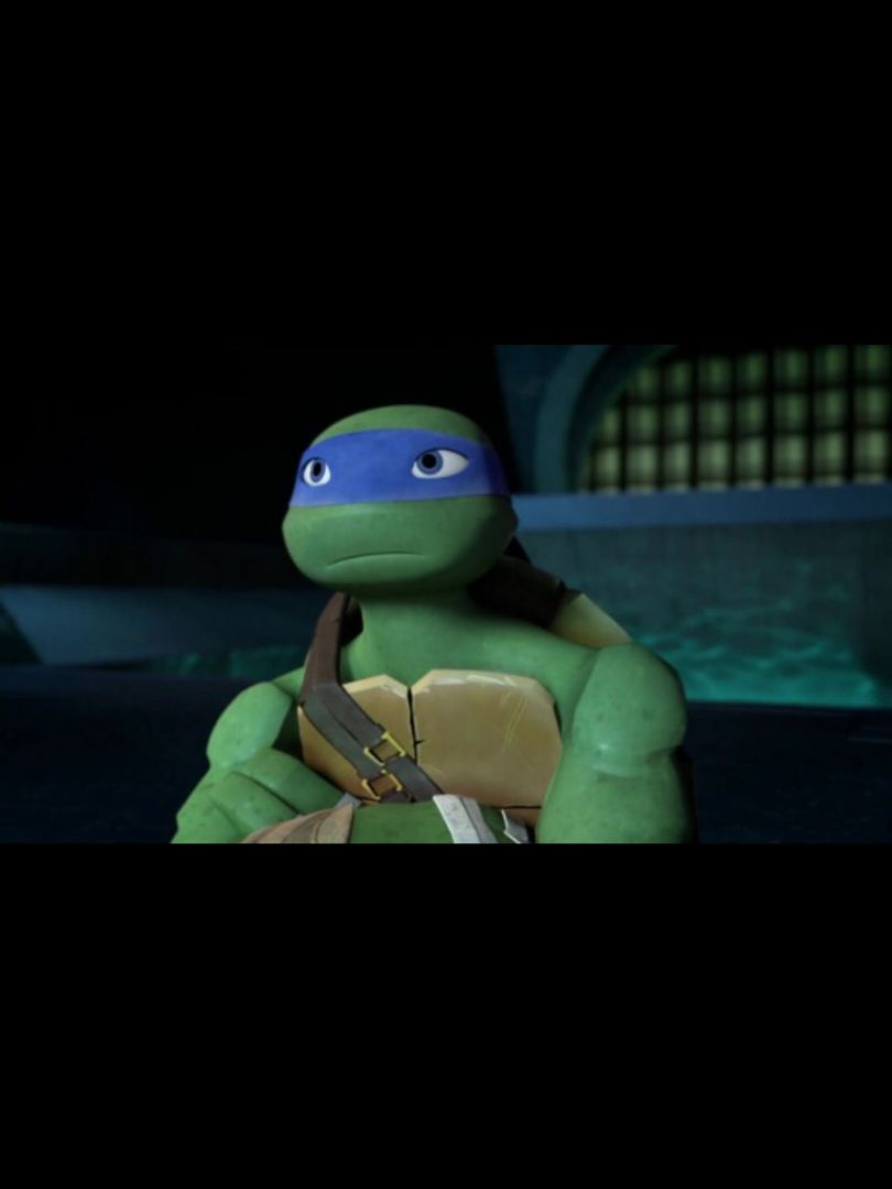 Tmnt Raphael X Reader Chapter 3 Wattpad - Imagez co