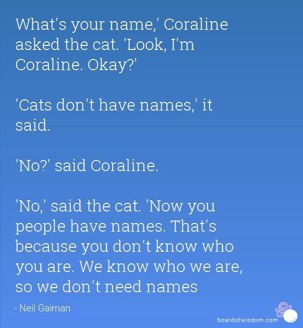 Quotes About Anything And Everything We Don T Need Names Wattpad