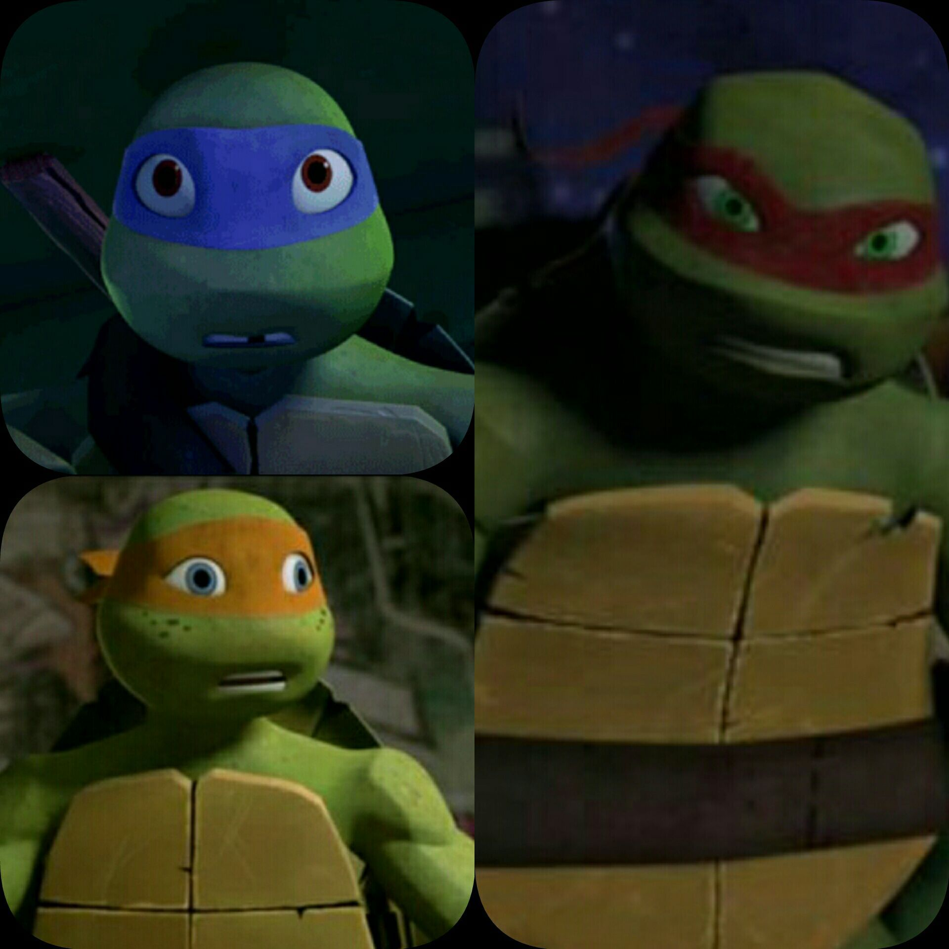 Tmnt Fanfiction I Will Protect My Brothers At Any Cost I M Not
