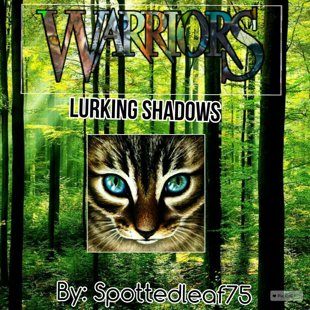 Wattpad Book Cover Makers : Warrior cats book cover maker forum wattpad
