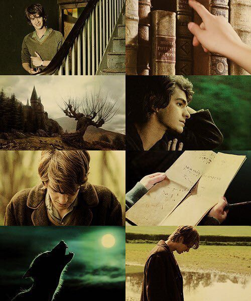 Harry potter one shots - Young remus lupin x reader - WattpadYoung James Potter X Reader X Lily Angst