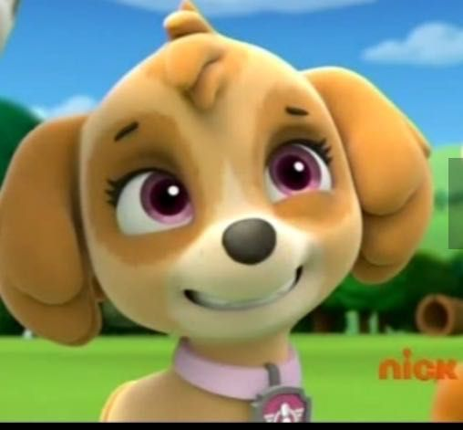 Paw patrol death scene - The paw patrol gets torn apart - Wattpad