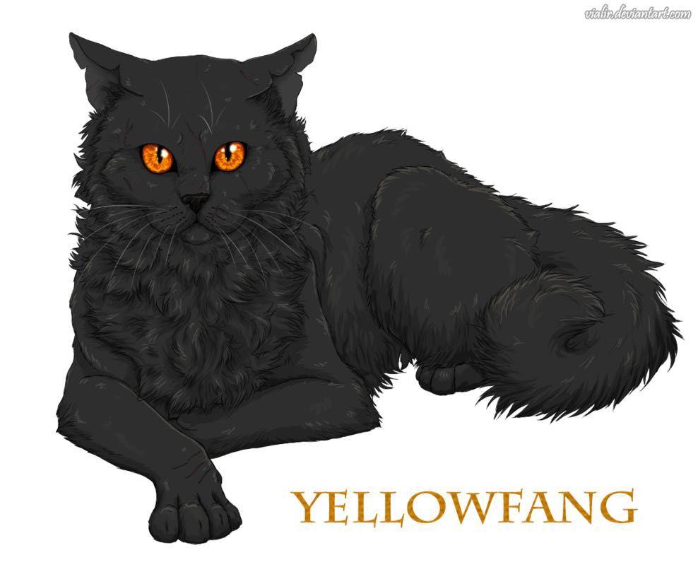 Warrior Cat Quotes All Yellowfang S Quotes Wattpad