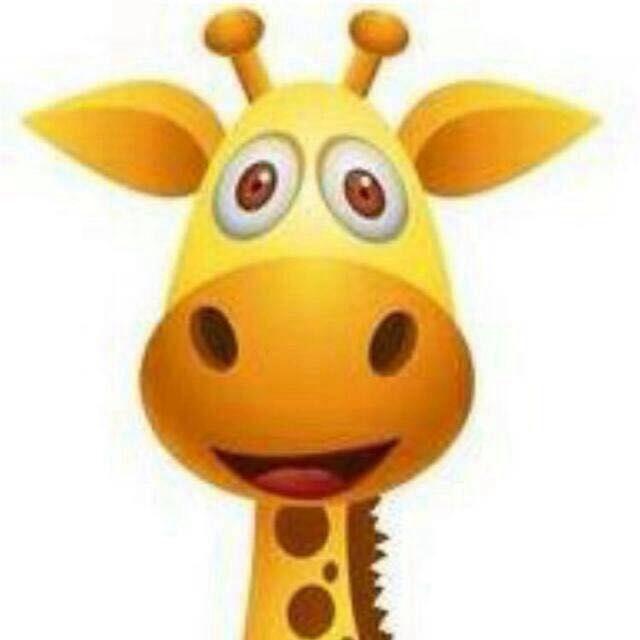 Whatsapp Profilbild Giraffe