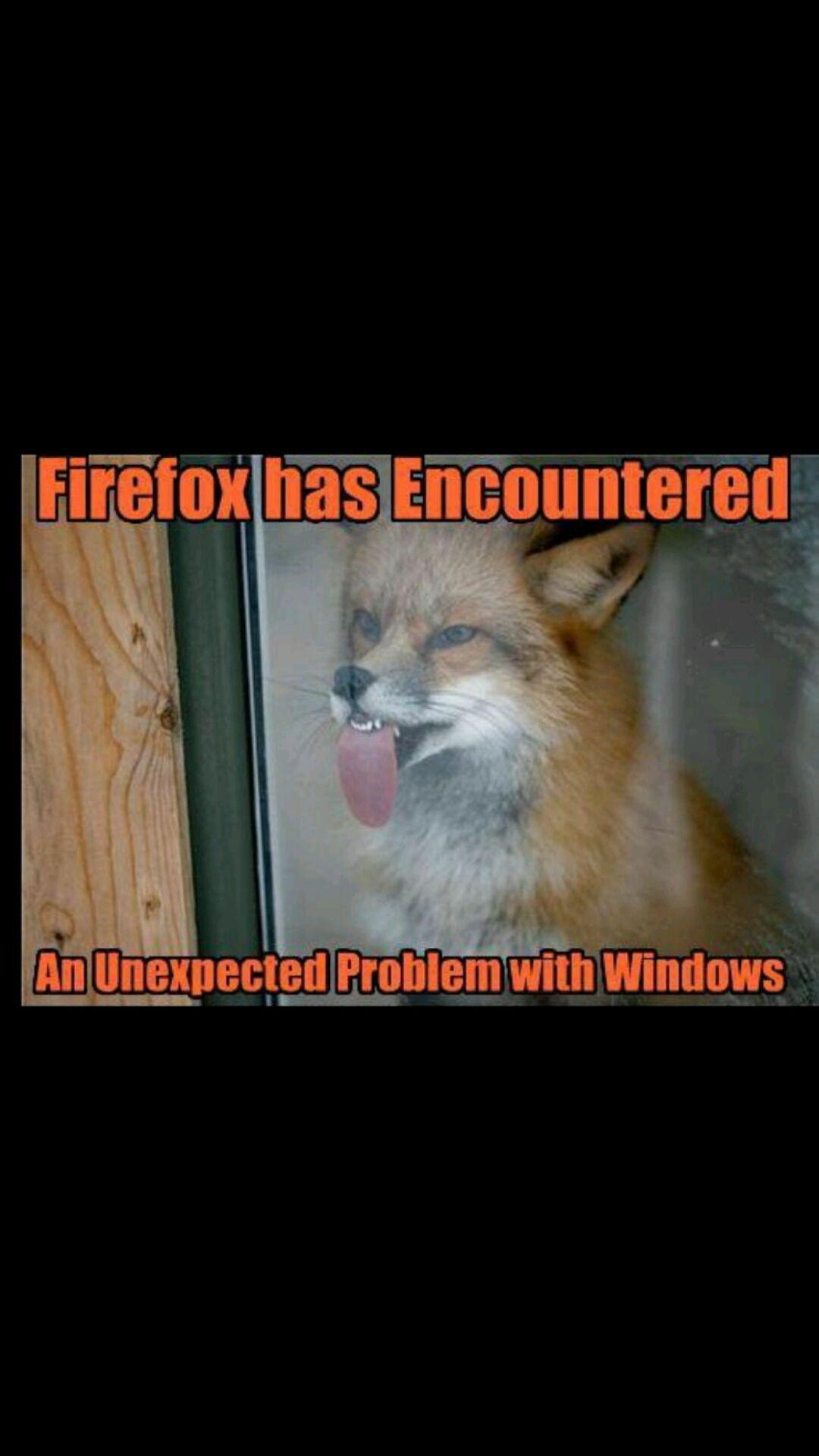 Random memes, Gifs, And Jokes - firefox - Wattpad
