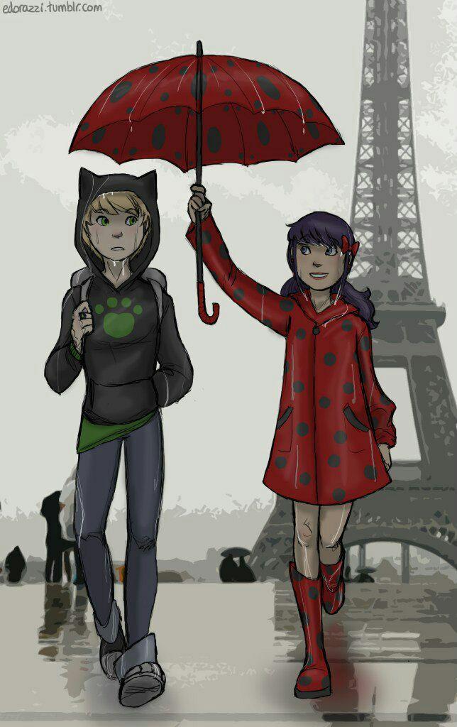 Леди баг и супер кот зонтик