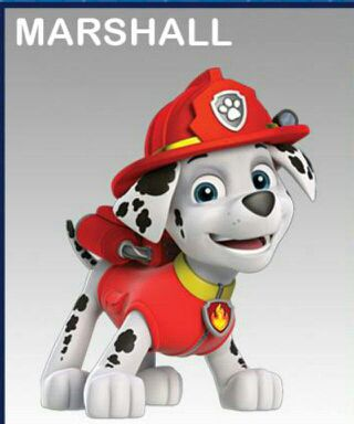 paw patrol next generation   marshall and everest pups   wattpad