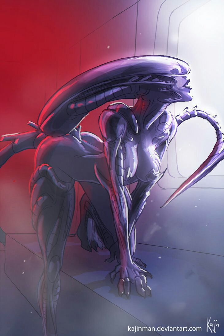 Female xenomorph x male reader fanfiction