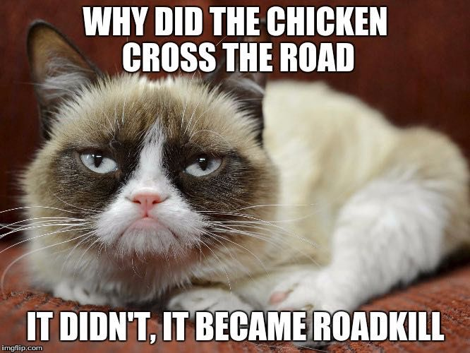 fabulous book of humor why did the chicken cross the road wattpad