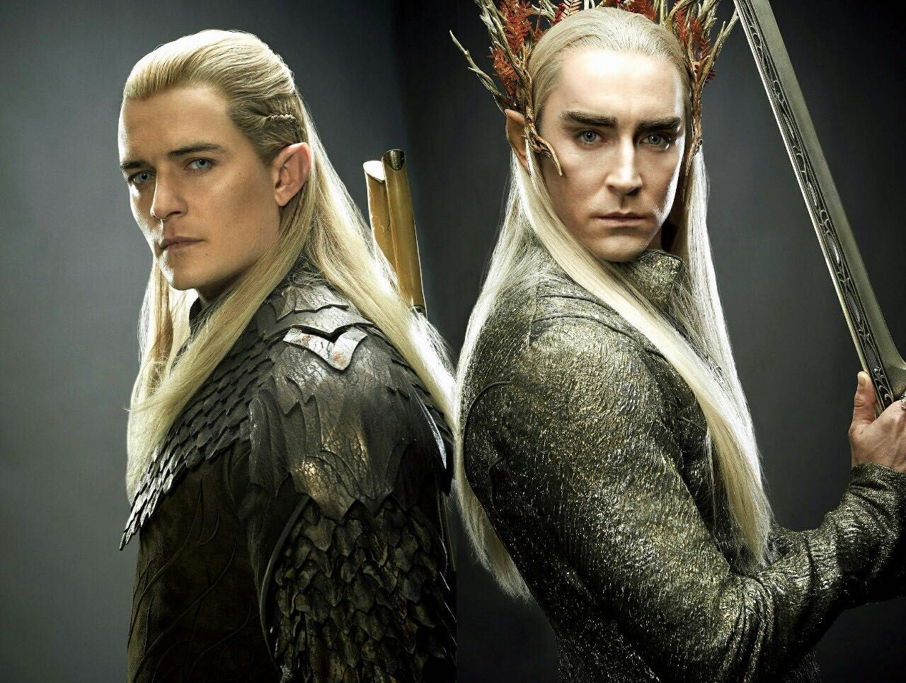 The Lord of the ring & the hobbit imagines - 16: Thranduil ...