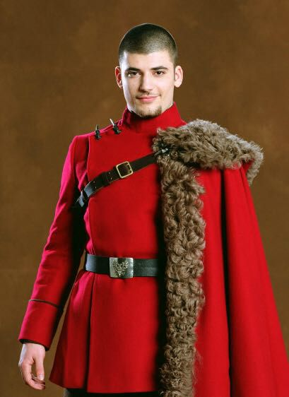 Harry Potter characters x reader - Viktor Krum x reader ...Young James Potter X Reader