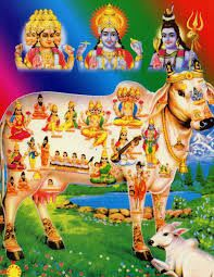 Things You Probably Dont Know from Hindu Texts - The Belief