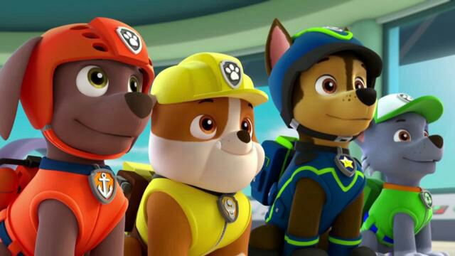 Hurt Paw Patrol Related Keywords & Suggestions - Hurt Paw Patrol