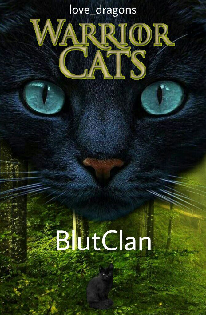Cat S Cover