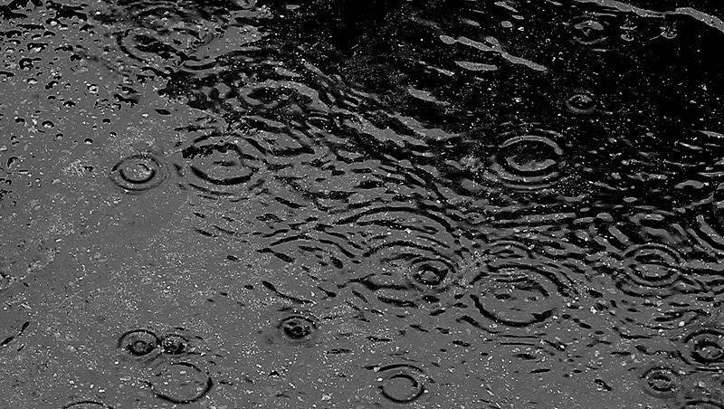 Heavy rain address 852 theodore roosevelt