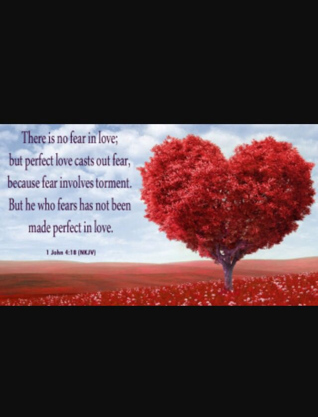 Image result for image there is no fear in love 1 john 4:18 bible