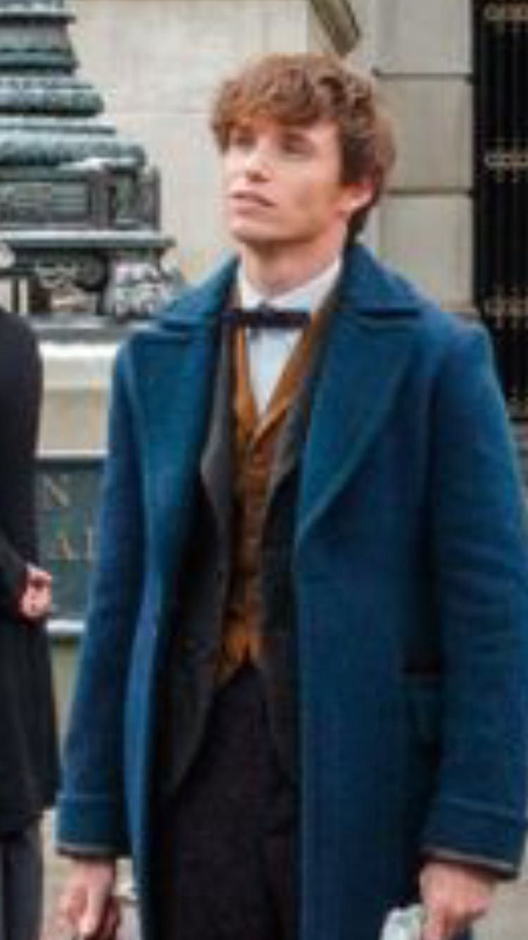 Newt Scamander x Reader Preferences and Imagines - Your