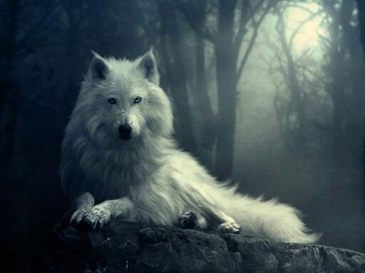 The Female Alpha SAMPLE - The Female Alpha 2- White Wolf