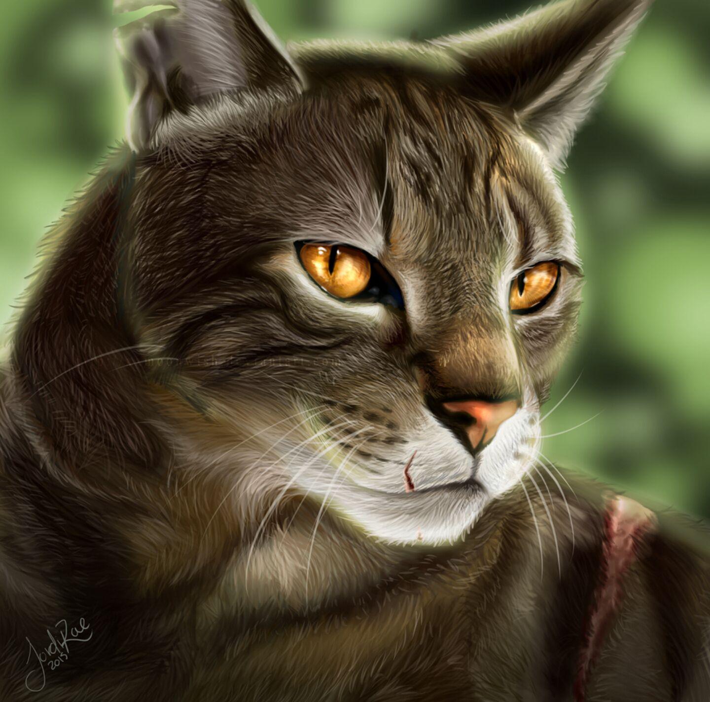 Warriors Cat Pledge - The RiverClan Pledge - Wattpad