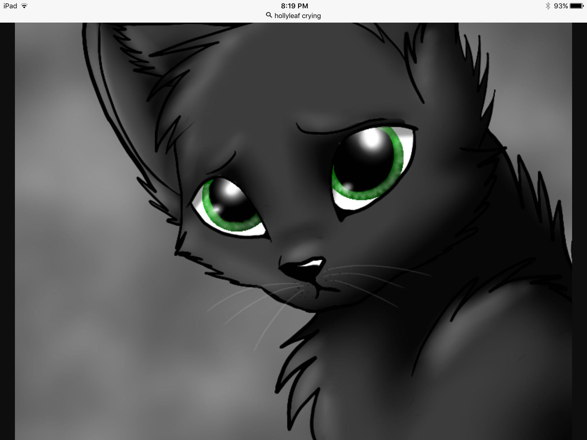 Cats Fantasy Fun Hollyleaf Revenge Warriors