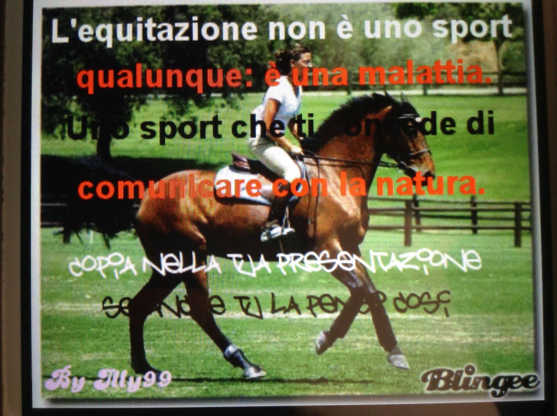 Preferenza Frasi e disegni sui cavalli - 3ª - Wattpad PJ48