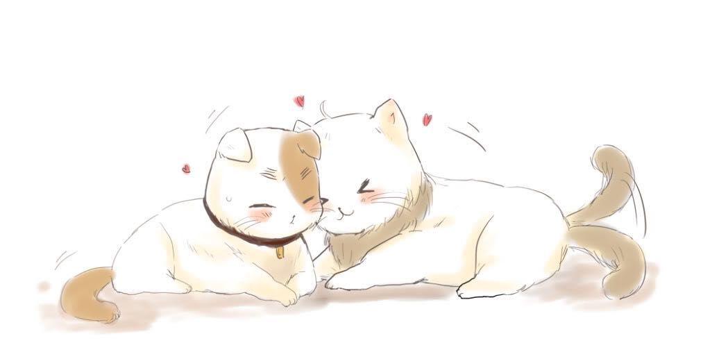 Hetalia x Reader - England-cat x Kitten Reader x America-cat part 1