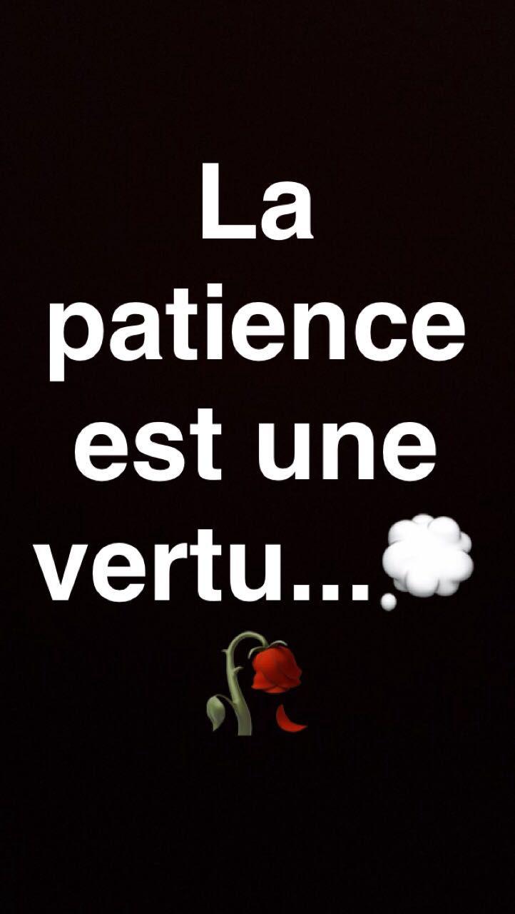 la patience est une vertu en bref patience