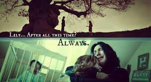 Harry Potter x Reader - Severus Snape x Reader (New Teacher) Part 2