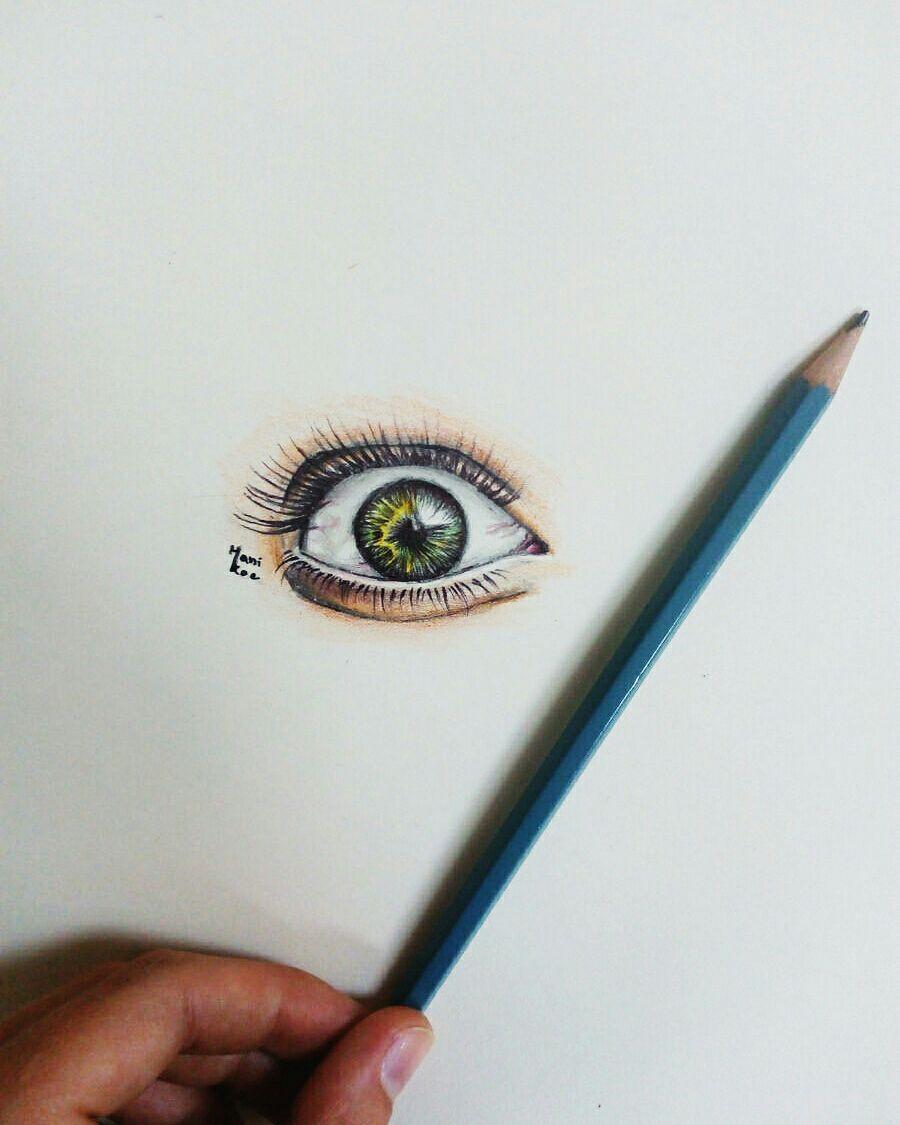 Kresleni Moje Vykresy Oko Pastelkami Wattpad