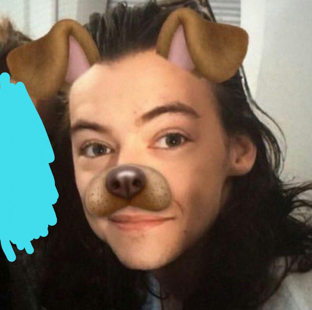 Harry Styles Wattpad