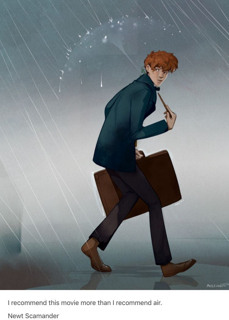 Newt Scamander x Reader Preferences and Imagines - Newt and