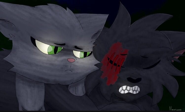What Warrior Cat Ship Are You