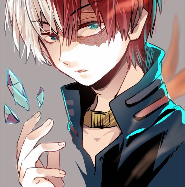 Villain Todoroki x Reader [BNHA FanFic] - Chapter 8 - How It Was