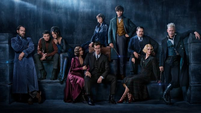 Newt Scamander x Reader Preferences and Imagines - NEW MOVIE