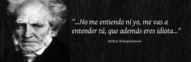 Frases Celebres Arthur Schopenhauer Wattpad