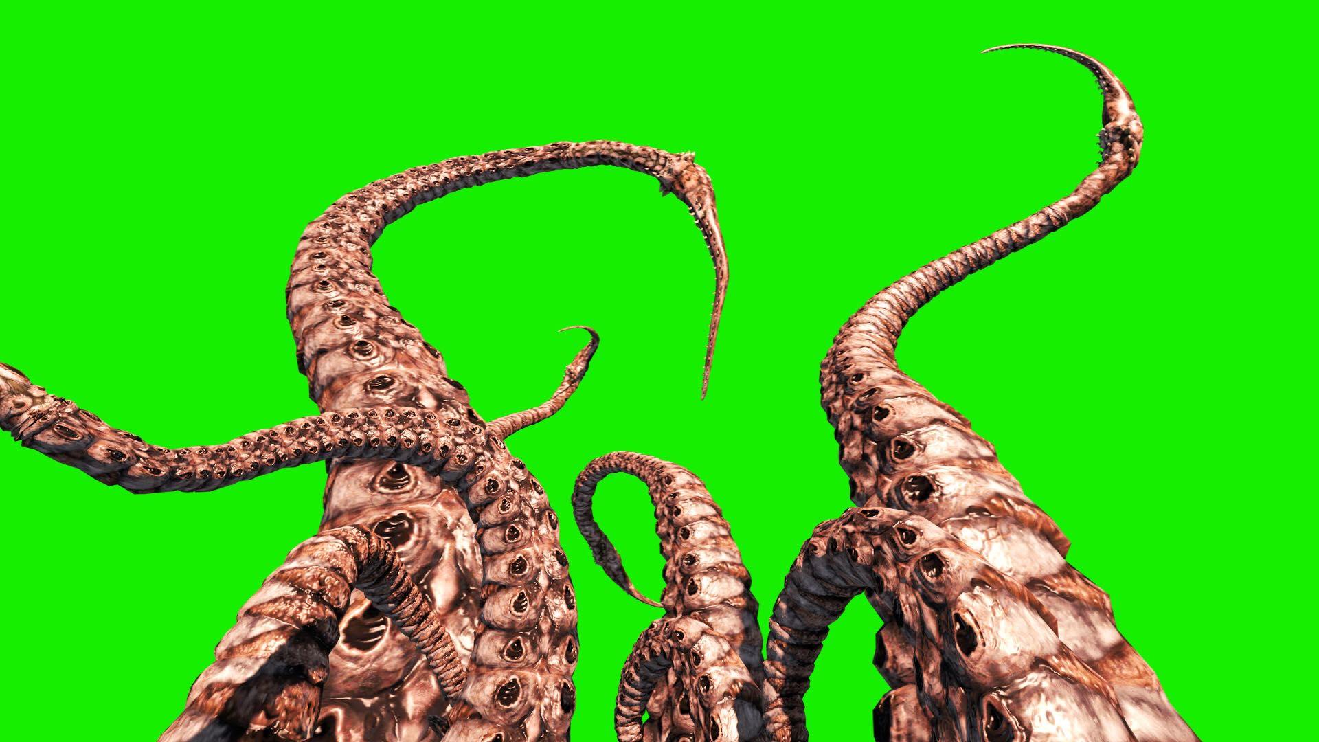 monster x readers - tentacle monster x fem! reader ?nsfw? - wattpad